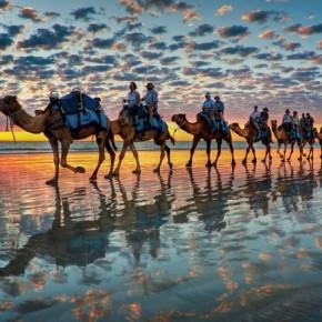 camel_rider