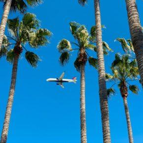31歳以上の人が海外移住を実現する方法【ワーホリNG】