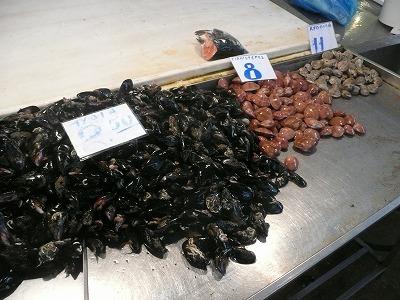 ギリシャの貝