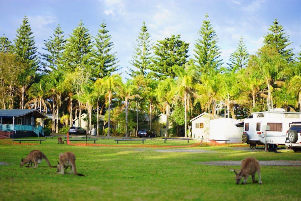 オーストラリアにある3大キャラバンパークをチェックする