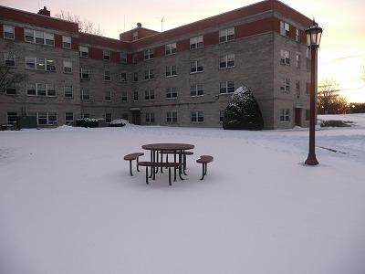 ニューヨークはついに雪景色!1ヶ月間の冬休みに入ります